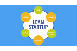 Harvard Business Review - Why the Lean start-Up Changes Everything